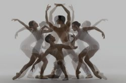 cervello ballerini